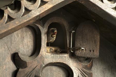 reloj cucu: Cuckoo de un antiguo reloj de cuco