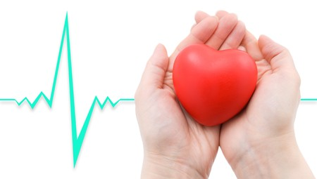 cardiac care: a red heart in caring female hands, a cardiogram in the background