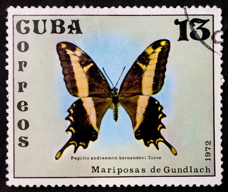 swallowtail: CUBA - CIRCA 1972: A stamp depicts a swallowtail butterfly, Papilio machaon, circa 1972