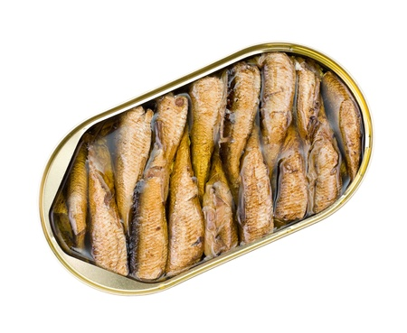 an open oval can of sprats in oil photo