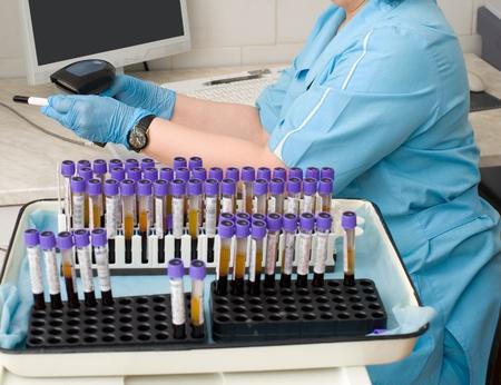 nurses station: nurse feeds data of test tubes with blood for analysis into the database Stock Photo