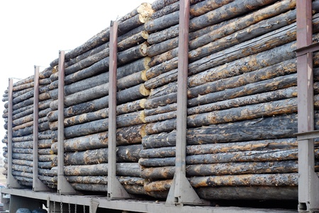 transported: a lot of round logs being transported by truck Stock Photo
