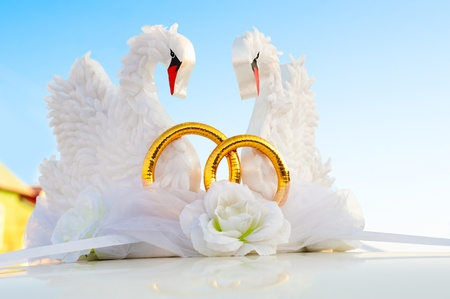 two artificial swans with golden rings as a car wedding decoration photo