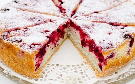 a fresh cowberry charlotte cake - a closeup shot Stock Photo - 11049308