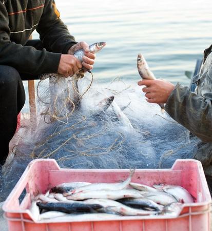 fischerei: zwei Fischer entladen ihren Fang nach einem morgendlichen Fischfang