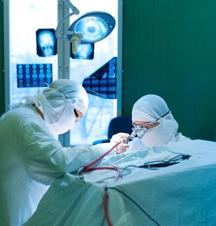 quirurgico: una cirug�a en el cerebro real, dos cirujanos en el trabajo