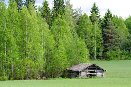 a wooden old shed at the edge of green meadow photo