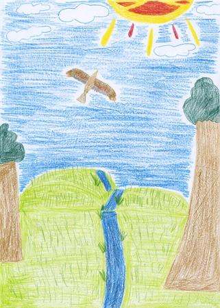 a kids drawing - an eagle flies over a valley photo