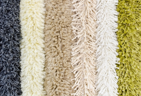 different shaggy carpet samples, a closeup shot photo