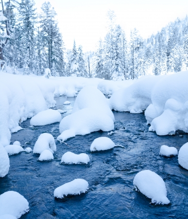 winter landscape - a nonfreezing stream in winter snowy forest Standard-Bild