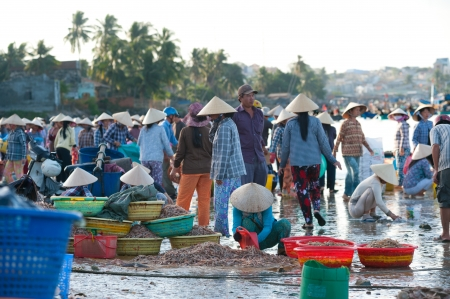 fishers: MUI NE, VIETNAM - FEBR 27  Mui Ne is a popular tourist attraction in Vietnam  A lot of fishers sort out their catch on the shore and sell fish to dealers, Feb 27, 2013, Mui Ne, Phan Thiet, Vietnam