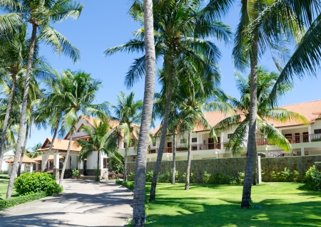 hotel among palm trees on sunny day, Southern Vietnam Stock Photo - 19106971