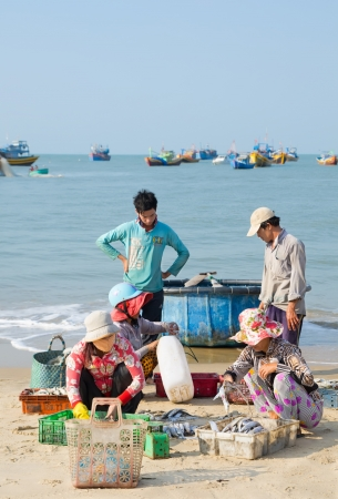 sort out: MUI NE, VIETNAM - MARCH 6: Unidentified women sort out the fish their husbands have caught, March 6, 2013, Mui Ne, Vietnam. Fishing is the main source of income for local villagers.