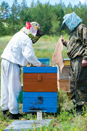 two beekeepers open a beehive after smoking photo