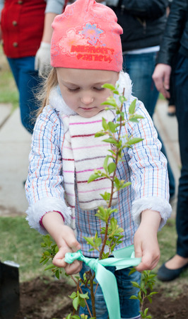 ulan ude: ULAN-UDE, RUSSIA - MAY 20, 2011  An unidentified little girl ties up a ribbon on a young tree just been planted near the City Palace of Childrens Arts