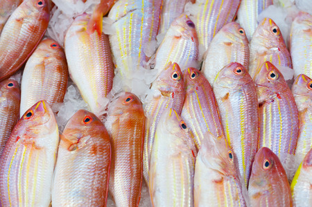 cooled: many raw fish on ice for sale Stock Photo
