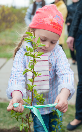 ulan ude: ULAN-UDE, RUSSIA - MAY 20, 2011: An unidentified little girl ties up a ribbon on a young tree just been planted near the City Palace of Childrens Arts.