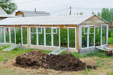 plot: handmade greenhouse and heap of manure in front