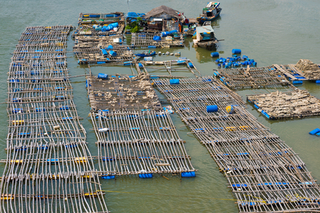 pisciculture: fish breeding farms on a river in the southern Vietnam