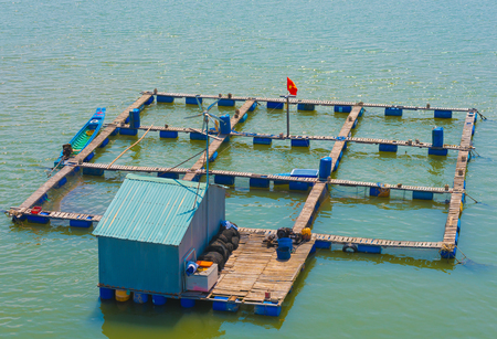 fish breeding: fish breeding farms on a river in the southern Vietnam