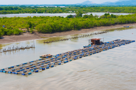 footway: fish breeding farm on a river in the southern Vietnam