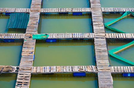 pisciculture: regular footbridges at fish breeding farm, Vietnam Stock Photo