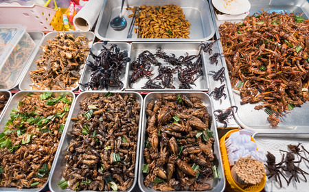 exotic Thai food - fried and roasted insects including scorpions Stock Photo