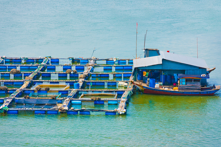 footway: fish breeding farms on a river in the southern Vietnam