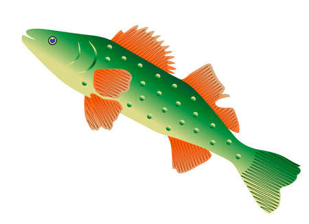 gill: green fish isolated on white background, digital drawing