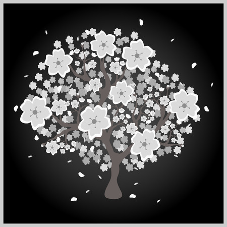 young leaves: Beautiful blossom grey and white tree on black background; made using vector graphics Illustration
