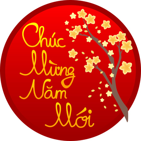 Happy new year (Chuc mung nam moi - in Vietnamese) wishing message with hoa mai yellow apricot branch on red circle background; vector graphics
