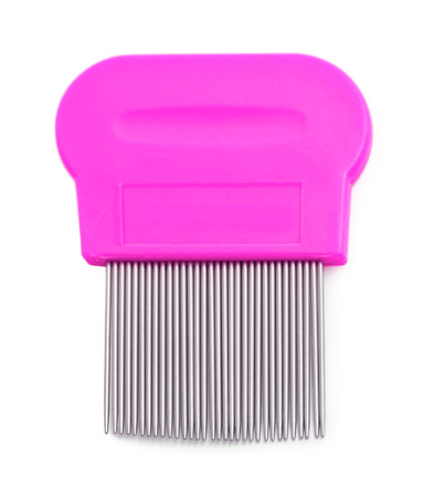 Lice comb for removing lice and nits isolated on white