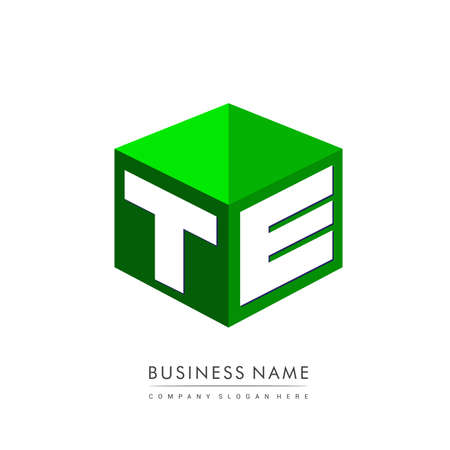Letter TE logo in hexagon shape and green background, cube logo with letter design for company identity. Logo