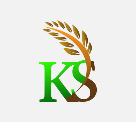 initial letter logo KS, Agriculture wheat Logo Template vector icon design colored green and brown.