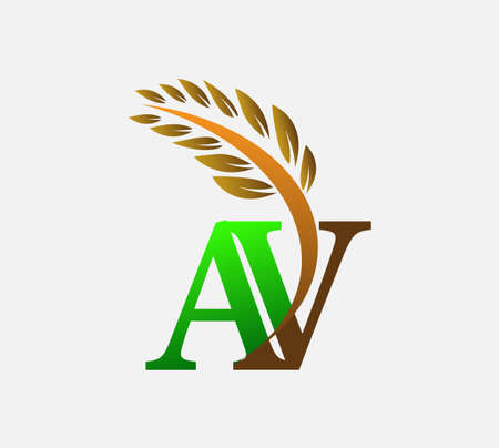 initial letter logo AV, Agriculture wheat Logo Template vector icon design colored green and brown.