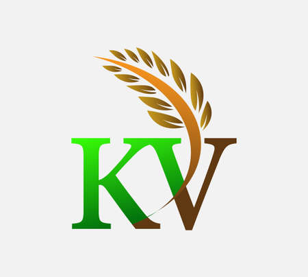 initial letter logo KV, Agriculture wheat Logo Template vector icon design colored green and brown. Ilustração