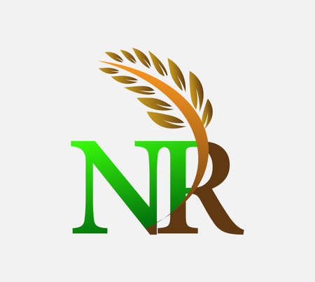 initial letter logo NR, Agriculture wheat Logo Template vector icon design colored green and brown.