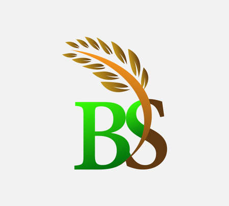 initial letter logo BS, Agriculture wheat Logo Template vector icon design colored green and brown.