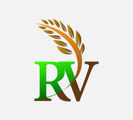 initial letter logo RV, Agriculture wheat Logo Template vector icon design colored green and brown.