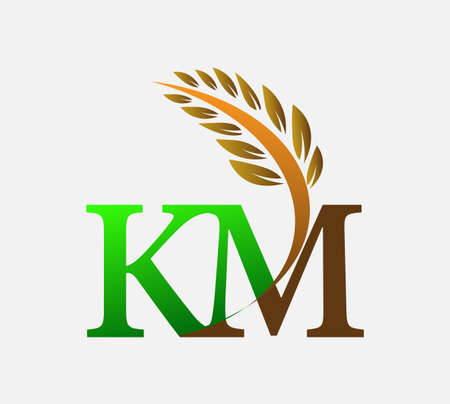 initial letter logo KM, Agriculture wheat Logo Template vector icon design colored green and brown. Ilustração