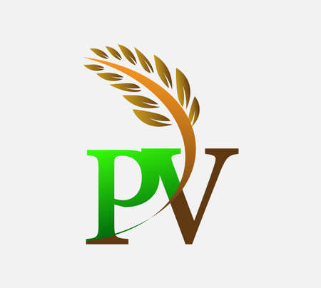 initial letter logo PV, Agriculture wheat Logo Template vector icon design colored green and brown. Ilustração