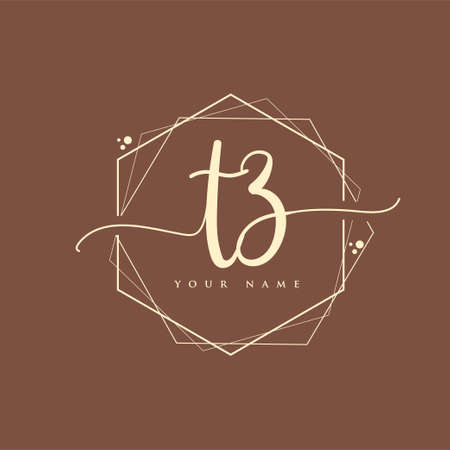 TZ Initial handwriting logo. Hand lettering Initials logo branding, Feminine and luxury logo design.