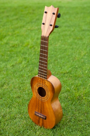 Ukulele on lawn background  photo