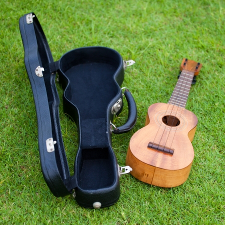 Ukulele and Bag on lawn background  photo
