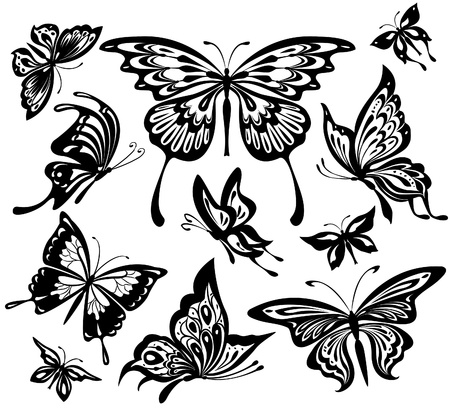 butterfly silhouette: Set of black and white butterflies Illustration