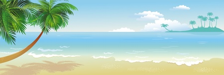 panorama beach: Panoramica spiaggia tropicale con palme