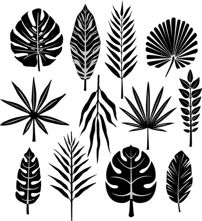 silueta hoja: hoja tropical Vectores