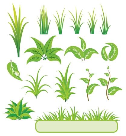 seedling: Green elements for design