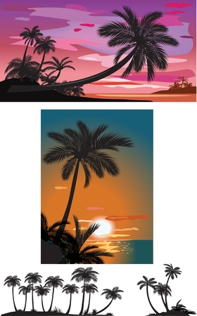 Palm trees at sunset Stock Vector - 9626529