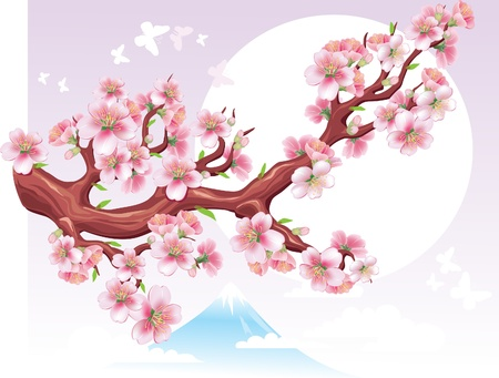 Flowering branch of sakura in the sun Vector
